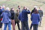 Ecological consultant training near Hexham, Northumberland