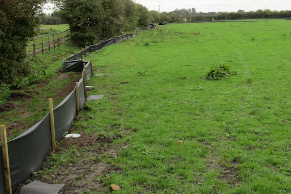 Newt fencing